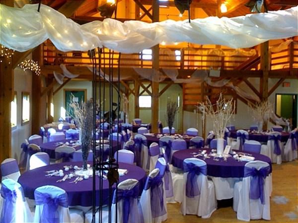 oganza purple chair cover
